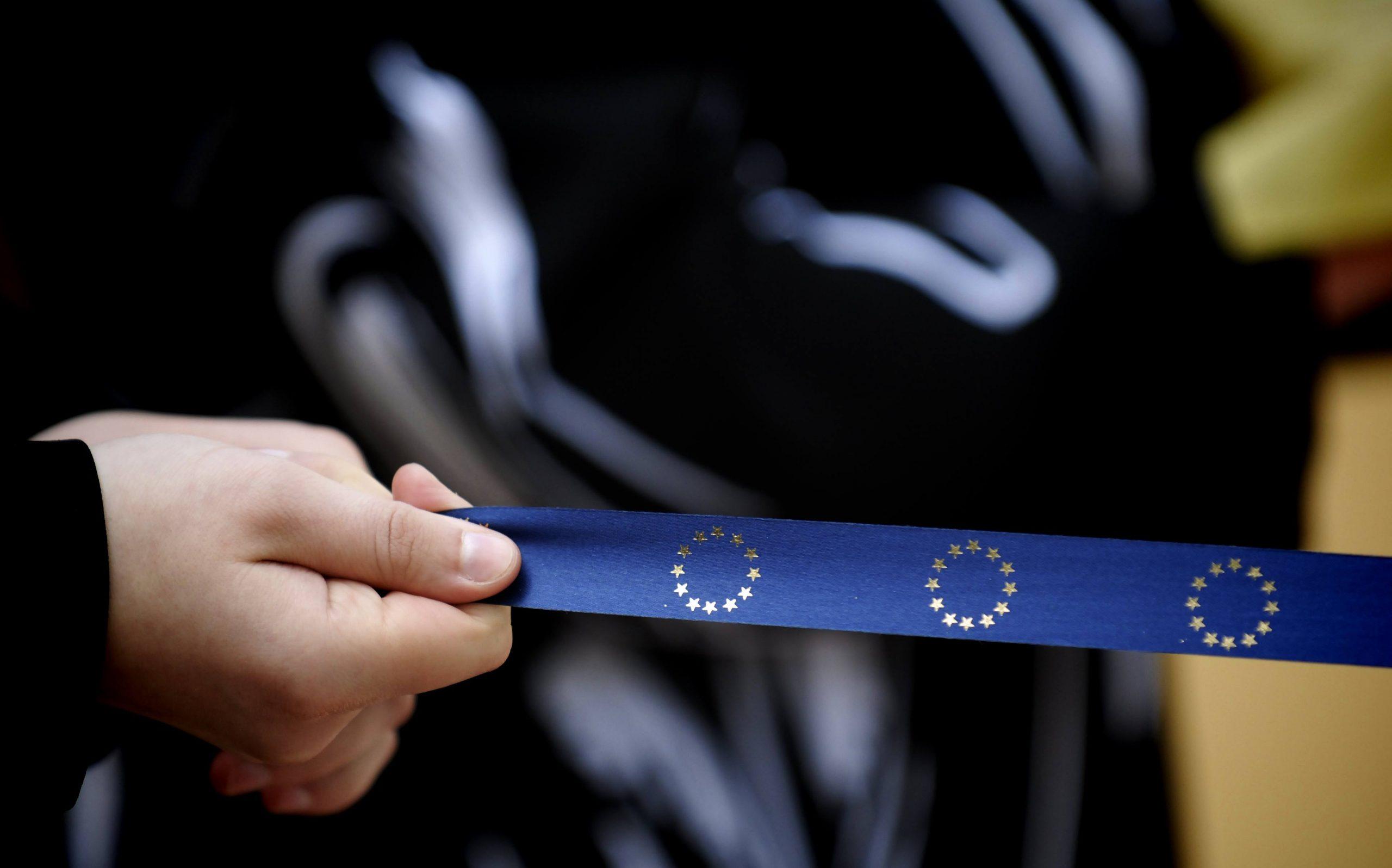 Евродепутат: ЕС не интересует политическая ориентация кандидата